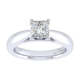 17003-diamond-.03ctw-mounting-Gabriel-14k-White-Gold-Princess-Cut-Solitaire-Engagement-Ring~ER5898W44JJ-5