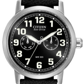citizen eco drive stainless with black leather strap
