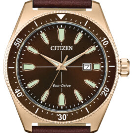 citizen eco drive brown face goldtone watch