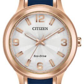 citizen eco drive goldtone ladies watch